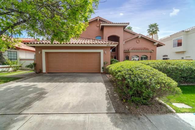 2027 E Catamaran Drive, Gilbert, AZ 85234 (MLS #6049735) :: Relevate | Phoenix