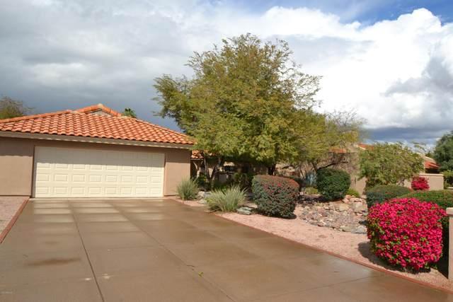 3746 E Sequoia Trail, Phoenix, AZ 85044 (MLS #6049955) :: Relevate | Phoenix