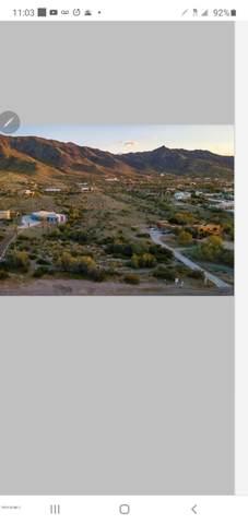 2411 W Olney Avenue, Phoenix, AZ 85041 (MLS #6052282) :: Conway Real Estate