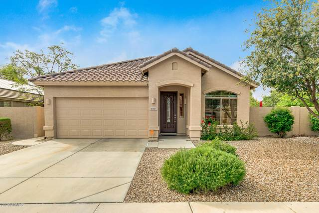 15251 W Windward Avenue, Goodyear, AZ 85395 (MLS #6052449) :: Conway Real Estate