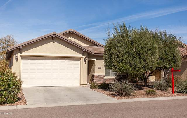 4250 N Princeton Drive, Florence, AZ 85132 (MLS #6052486) :: Lux Home Group at  Keller Williams Realty Phoenix