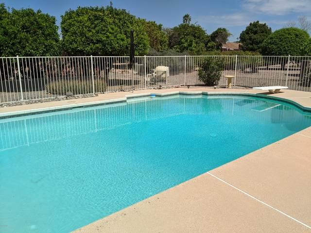 9514 W Pineridge Drive, Sun City, AZ 85351 (MLS #6052552) :: Long Realty West Valley