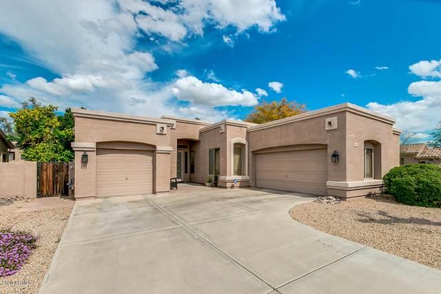 5306 W Saint John Road, Glendale, AZ 85308 (#6052572) :: AZ Power Team | RE/MAX Results