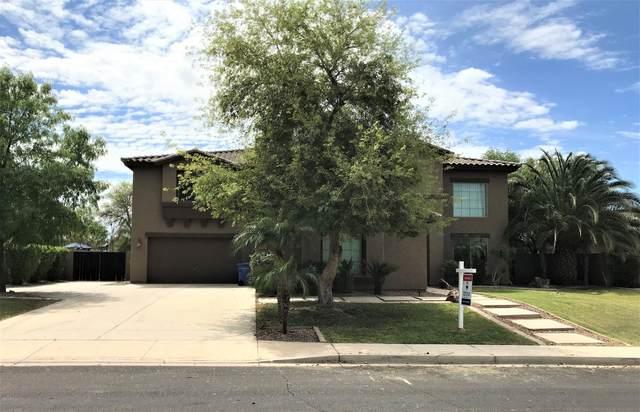 4053 E Ravenswood Drive, Gilbert, AZ 85298 (MLS #6053380) :: Revelation Real Estate