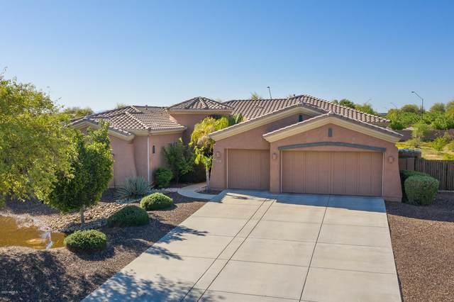 18427 W Beryl Court, Waddell, AZ 85355 (MLS #6053456) :: Brett Tanner Home Selling Team