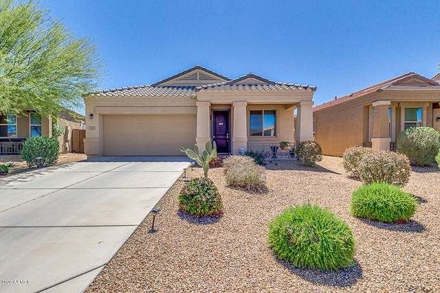 5045 E Iolite Street, San Tan Valley, AZ 85143 (MLS #6053905) :: Conway Real Estate