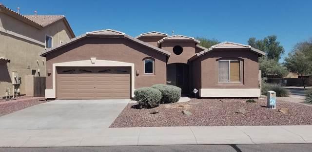44214 W Yucca Lane, Maricopa, AZ 85138 (MLS #6054582) :: Revelation Real Estate