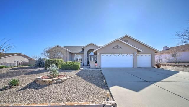 8715 S Sharps Road, Globe, AZ 85501 (MLS #6054718) :: Lux Home Group at  Keller Williams Realty Phoenix