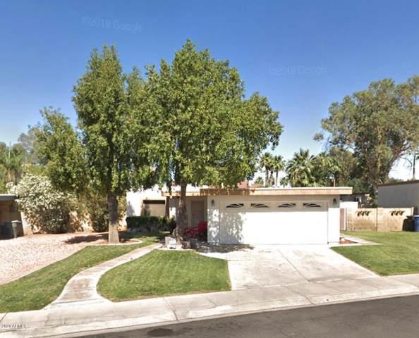4813 S Potter Drive, Tempe, AZ 85282 (MLS #6054869) :: The Kenny Klaus Team