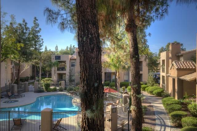 14145 N 92ND Street #2085, Scottsdale, AZ 85260 (MLS #6054914) :: The Kenny Klaus Team