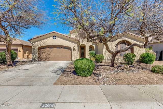 2974 S Roca Street, Gilbert, AZ 85295 (MLS #6055050) :: Lux Home Group at  Keller Williams Realty Phoenix