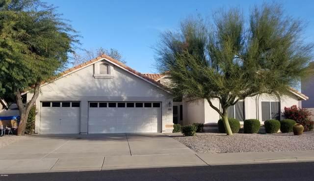 3058 E Nance Street, Mesa, AZ 85213 (MLS #6055371) :: My Home Group