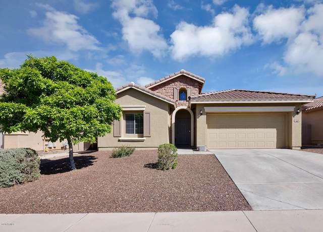 11544 E Segura Avenue, Mesa, AZ 85212 (MLS #6055683) :: My Home Group