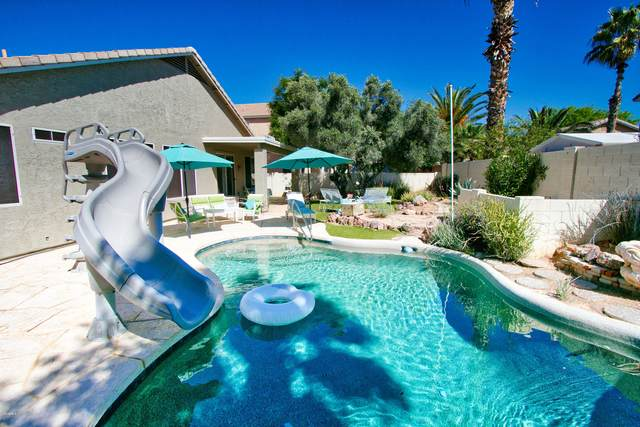 1513 S Gibson Street, Gilbert, AZ 85296 (MLS #6055693) :: The Property Partners at eXp Realty