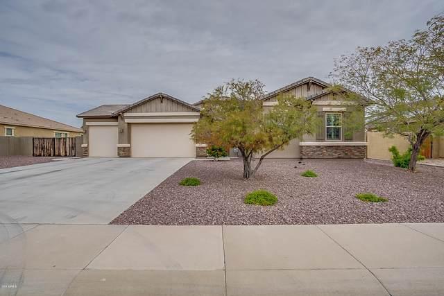 18512 W Montebello Avenue, Litchfield Park, AZ 85340 (MLS #6056092) :: The Laughton Team