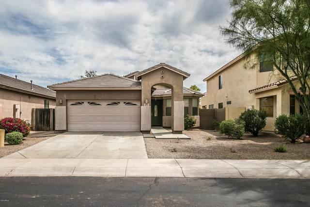 5613 W Lydia Lane, Laveen, AZ 85339 (MLS #6056336) :: Brett Tanner Home Selling Team