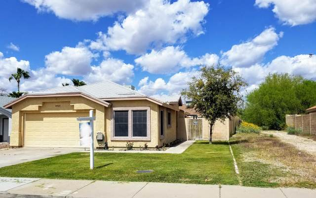 6564 E Northridge Street, Mesa, AZ 85215 (MLS #6056525) :: The Kenny Klaus Team