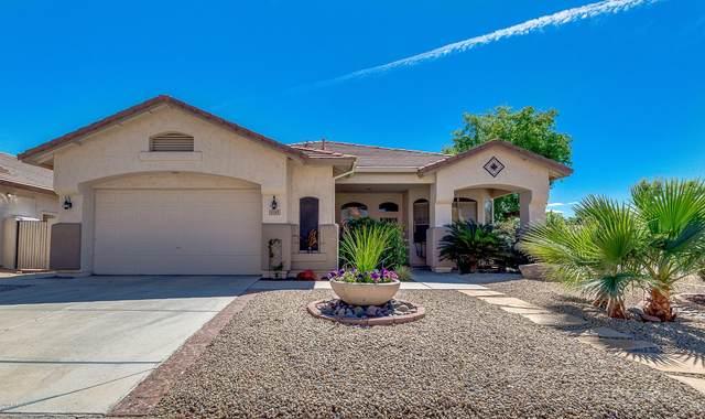 6593 W Piute Avenue, Glendale, AZ 85308 (MLS #6056592) :: The Garcia Group