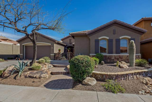 3634 W Links Drive, Phoenix, AZ 85086 (MLS #6056931) :: Conway Real Estate