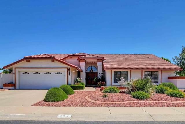 13910 W Pennystone Drive, Sun City West, AZ 85375 (MLS #6057235) :: Arizona Home Group