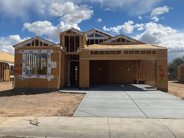 1165 E Gabrilla Drive, Casa Grande, AZ 85122 (MLS #6057428) :: Kortright Group - West USA Realty