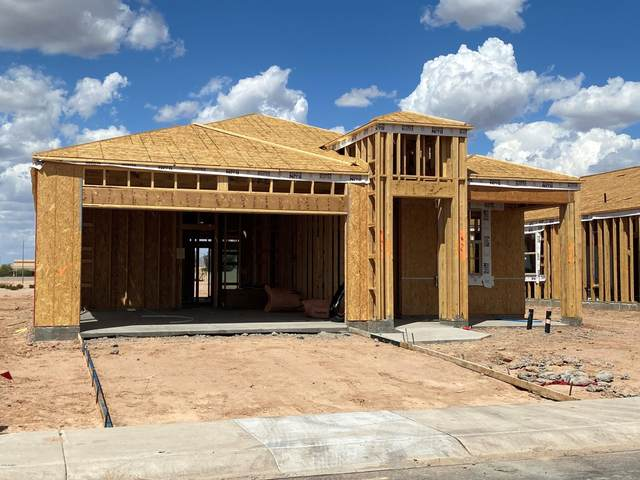 1258 E Evelyn Drive, Casa Grande, AZ 85122 (MLS #6057480) :: Conway Real Estate