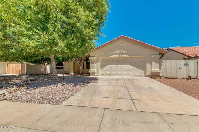 16207 N 61ST Drive, Glendale, AZ 85306 (MLS #6057521) :: The Bill and Cindy Flowers Team