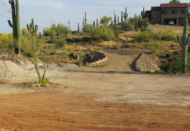 3410 N Val Vista Road, Apache Junction, AZ 85119 (MLS #6057882) :: Klaus Team Real Estate Solutions