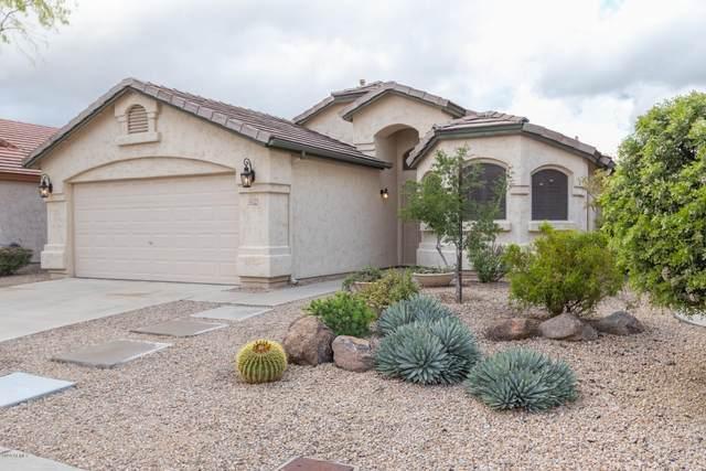 4502 E Lone Cactus Drive, Phoenix, AZ 85050 (MLS #6058102) :: Brett Tanner Home Selling Team