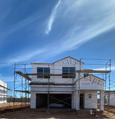 11699 E Verbina Lane, Florence, AZ 85132 (MLS #6058168) :: Conway Real Estate