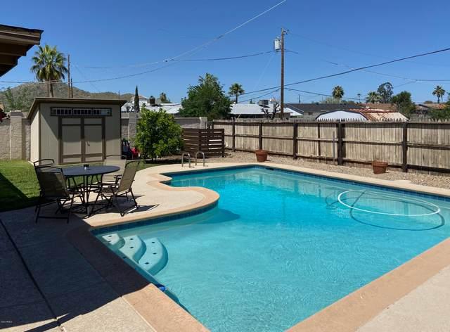 3320 E Thunderbird Road, Phoenix, AZ 85032 (MLS #6058653) :: Conway Real Estate