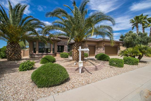 15574 W Big Sky Drive, Surprise, AZ 85374 (MLS #6058792) :: NextView Home Professionals, Brokered by eXp Realty