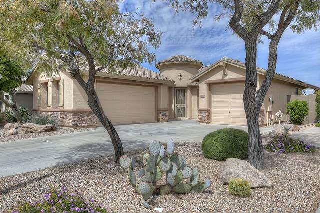 2644 W Coyote Creek Court, Phoenix, AZ 85086 (MLS #6059630) :: Kepple Real Estate Group