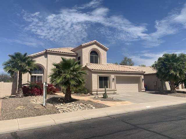 1902 W Canary Way, Chandler, AZ 85286 (MLS #6059738) :: Conway Real Estate