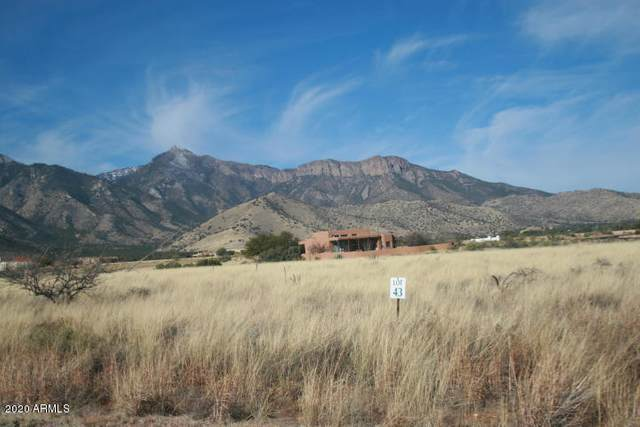 Lot 43 S Hackney Place, Hereford, AZ 85615 (MLS #6060628) :: Balboa Realty