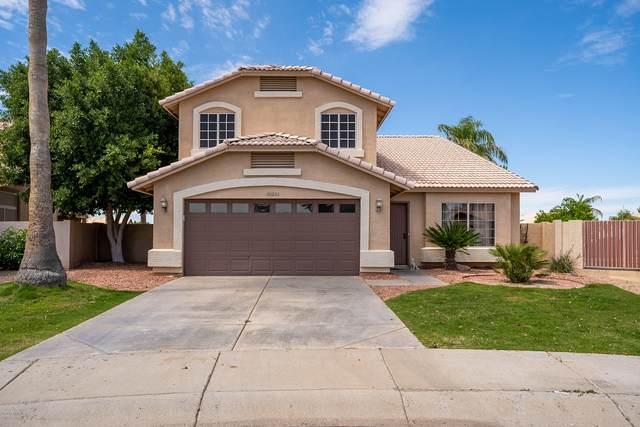 20266 N 53RD Drive, Glendale, AZ 85308 (MLS #6060688) :: REMAX Professionals