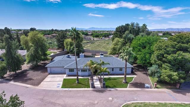 1524 S 108TH Way, Chandler, AZ 85286 (MLS #6060759) :: Arizona Home Group