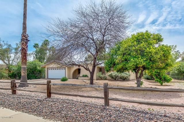 5325 E Thunderbird Road, Scottsdale, AZ 85254 (MLS #6060893) :: Yost Realty Group at RE/MAX Casa Grande