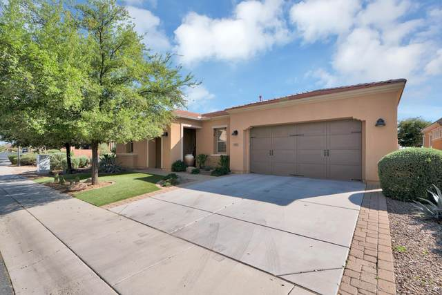 1463 E Sweet Citrus Drive, Queen Creek, AZ 85140 (MLS #6060964) :: Yost Realty Group at RE/MAX Casa Grande