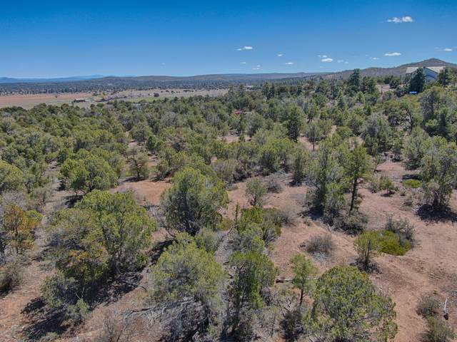2.65 Acres Gardenia Ln, Show Low, AZ 85901 (MLS #6061123) :: The Results Group