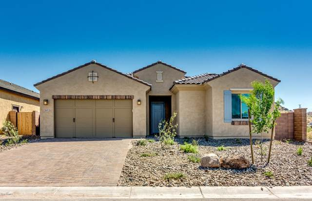 16451 W Valencia Drive, Goodyear, AZ 85338 (MLS #6061365) :: The Bill and Cindy Flowers Team