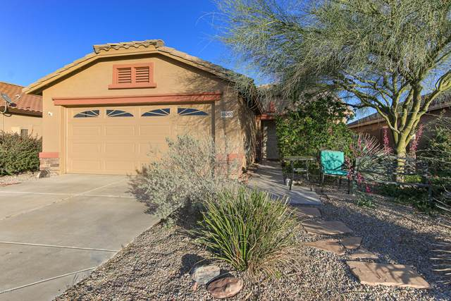 48069 N Rico Way, Gold Canyon, AZ 85118 (MLS #6061409) :: Homehelper Consultants