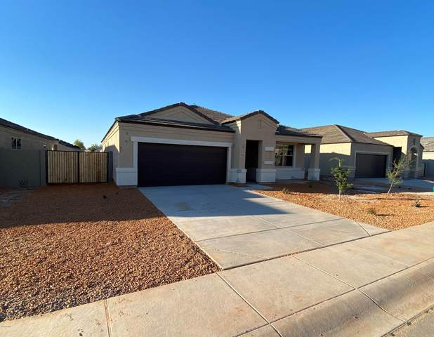 10458 E Lupine Lane, Florence, AZ 85132 (MLS #6062018) :: Scott Gaertner Group