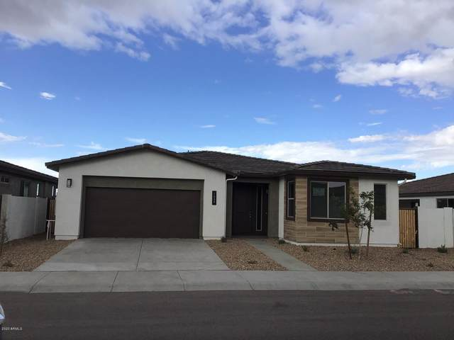 1434 W Silver Creek Lane, Queen Creek, AZ 85140 (MLS #6062520) :: The Property Partners at eXp Realty