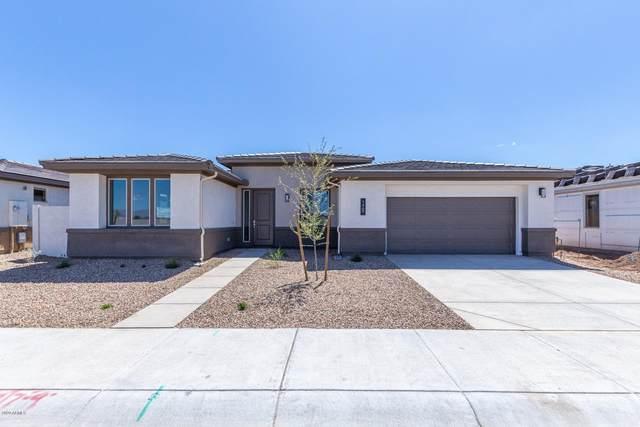 1469 W Avenida Del Valle, Queen Creek, AZ 85140 (MLS #6062570) :: The Property Partners at eXp Realty