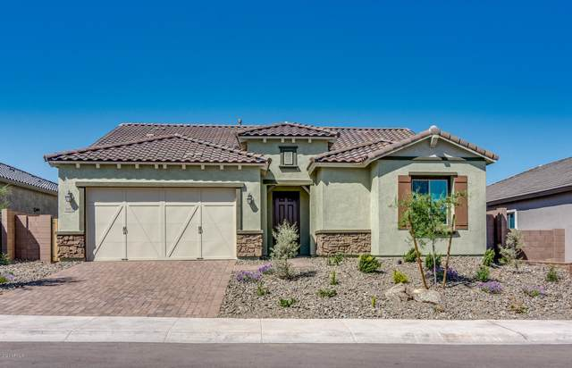 16432 W Valencia Drive, Goodyear, AZ 85338 (MLS #6062930) :: The Bill and Cindy Flowers Team