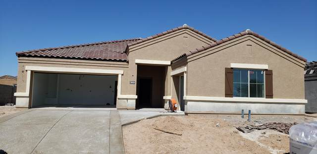 30520 W Clarendon Avenue, Buckeye, AZ 85396 (MLS #6063026) :: Lifestyle Partners Team