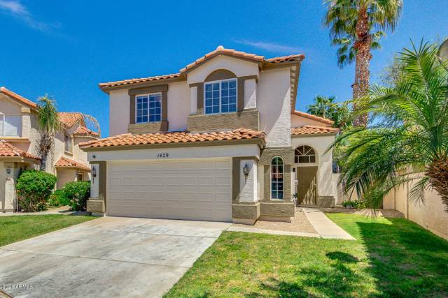 1429 N San Joaquin Drive, Gilbert, AZ 85234 (MLS #6065449) :: The Bill and Cindy Flowers Team