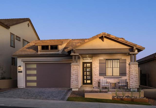 713 E Deer Creek Road, Phoenix, AZ 85048 (MLS #6065478) :: Revelation Real Estate