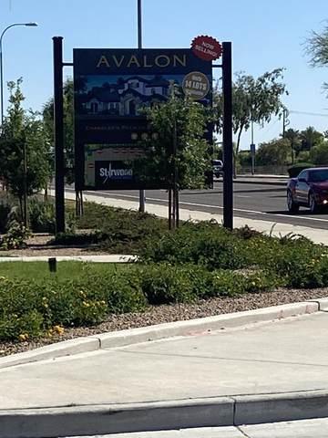1281 E Kingbird Place, Chandler, AZ 85286 (MLS #6068045) :: Klaus Team Real Estate Solutions